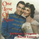 store-lanza-onelove